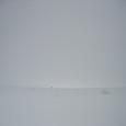 雪原に一人 alone
